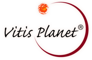Vitis Planet